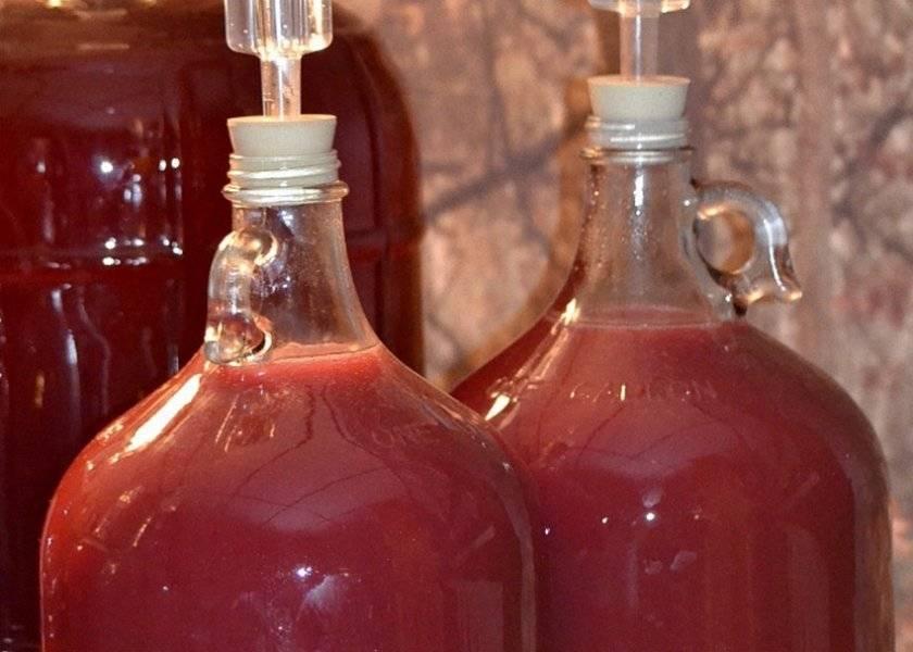 Малиновое вино в домашних условиях - пошаговый рецепт алкогольного ароматного напитка