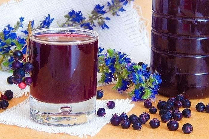 Ирга - полезные свойства, противопоказания и рецепты из ягод