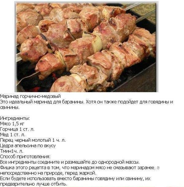Рецепт шашлыка из свинины на пиве