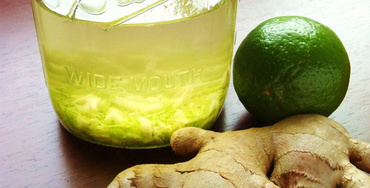 Имбирная настойка: 3 рецепта в домашних условиях