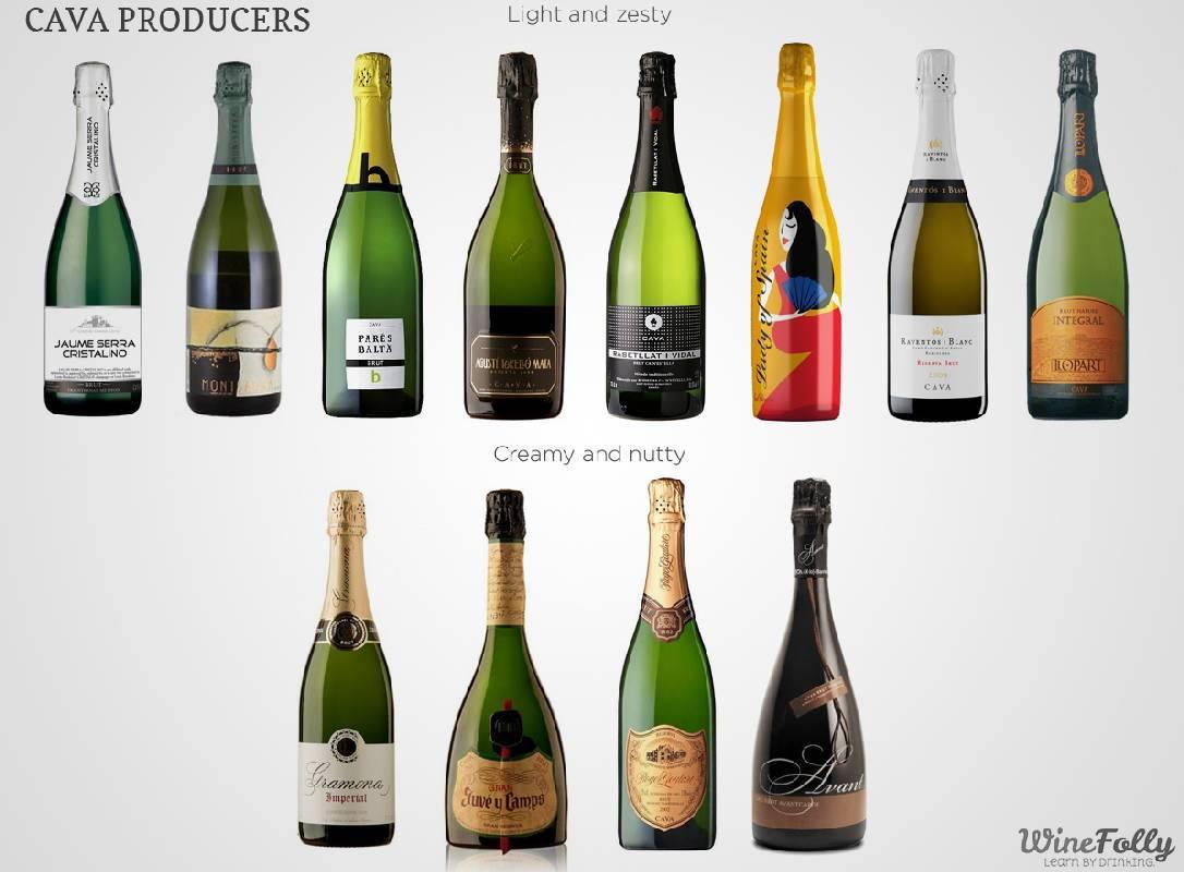 Шампанское cava из испании: описание, виды, особенности – как правильно пить