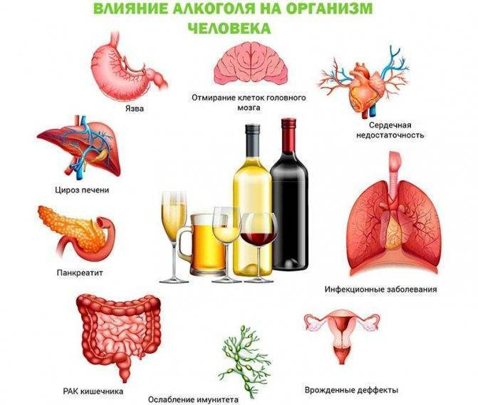 Как минимизировать вред от алкоголя: организм и похмелье после запоя