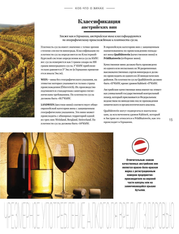 Все о винодельческом бизнесе в австрии