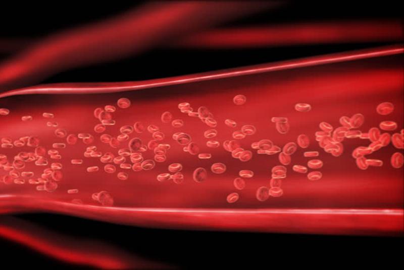 Спиртные напитки повышающие гемоглобин