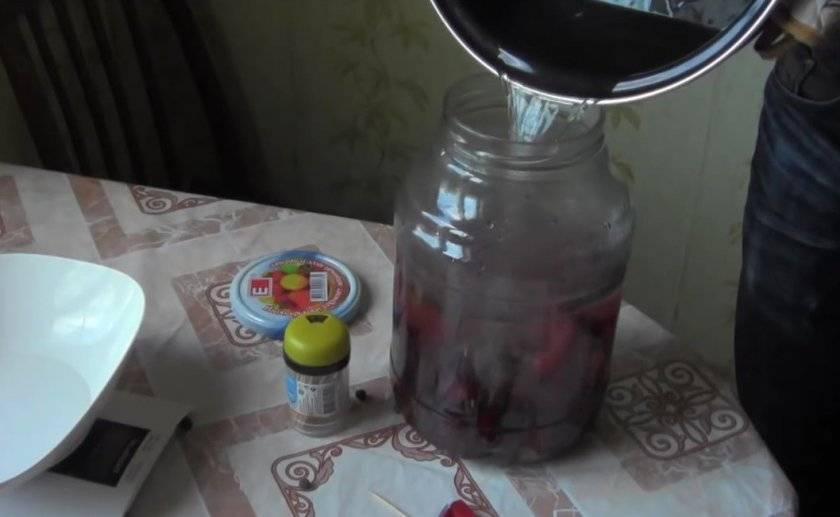 Домашние сливовые наливки с водкой и без