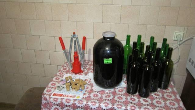 Домашнее вино: простые способы приготовления напитка своими руками