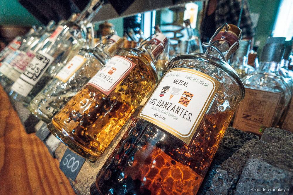 Мескаль: мексиканский напиток с червяком