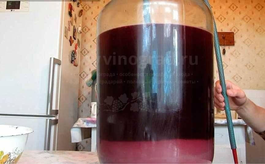 Чача напиток: что это такое, состав, градусы, как приготовить, как правильно употреблять