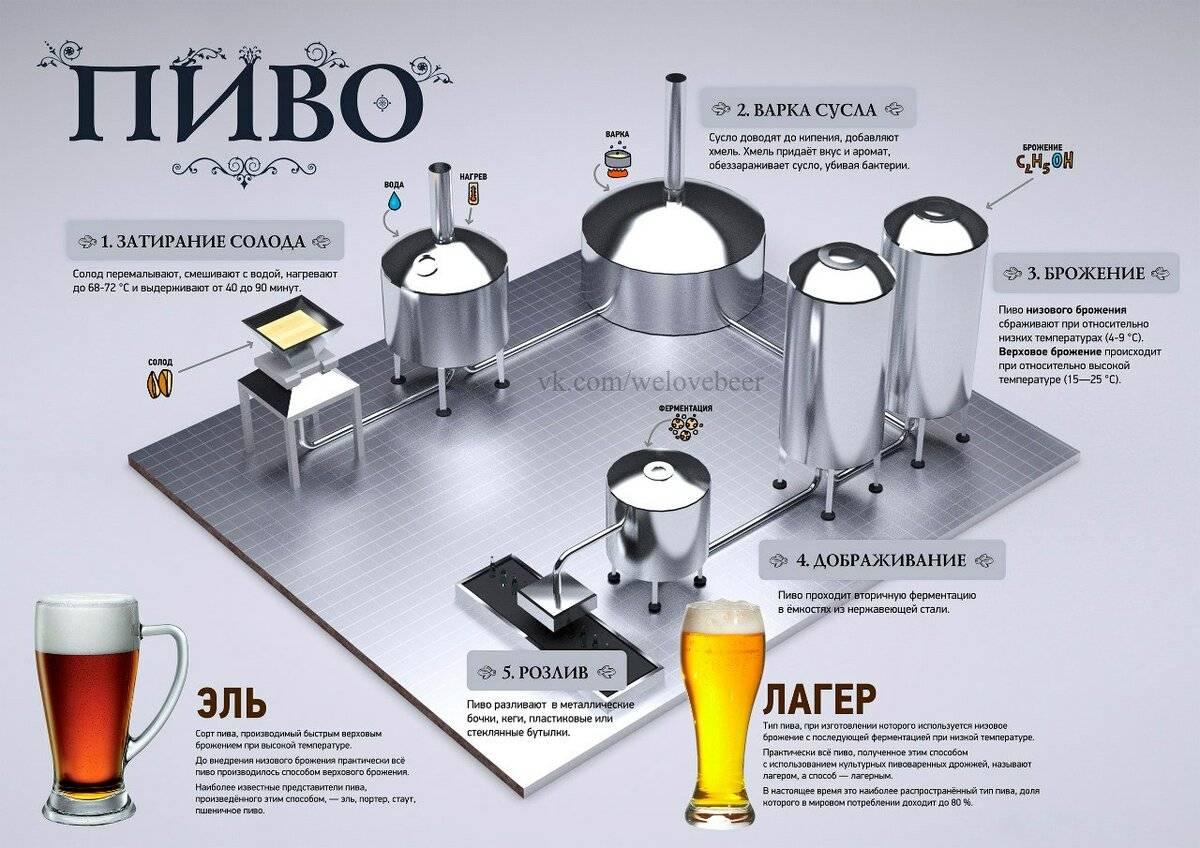 Варим пиво из концентрата
