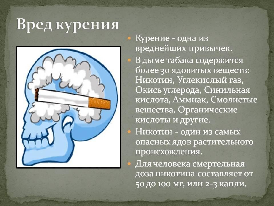 ᐉ махорка - полезные свойства, описание - roza-zanoza.ru