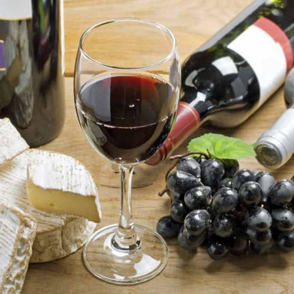 Можно ли пить вино: польза и вред