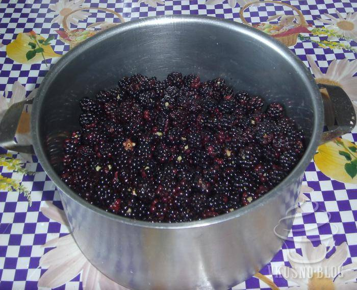 Наливка из ежевики и других ягод на водке