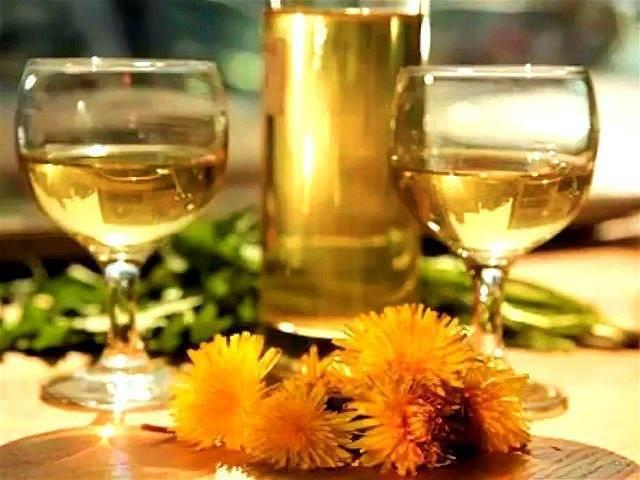 Вино из одуванчиков, рецепт приготовления домашнего вина из цветков одуванчика