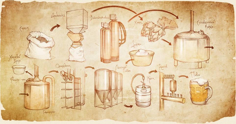 Профессия пивовар (технолог): где учиться, зарплата, плюсы и минусы