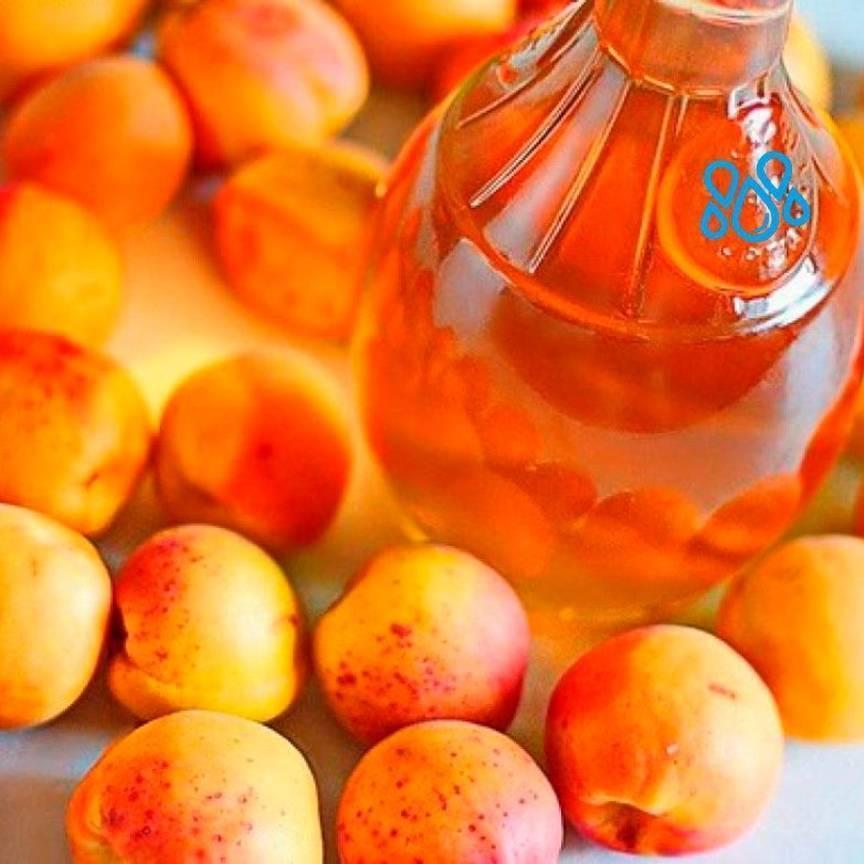 Брага и самогон из абрикосов: 5 рецептов в домашних условиях