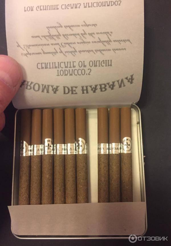 3 марки лучших сигарет до 140 рублей, которые разбирают блоками из-за настоящего табака