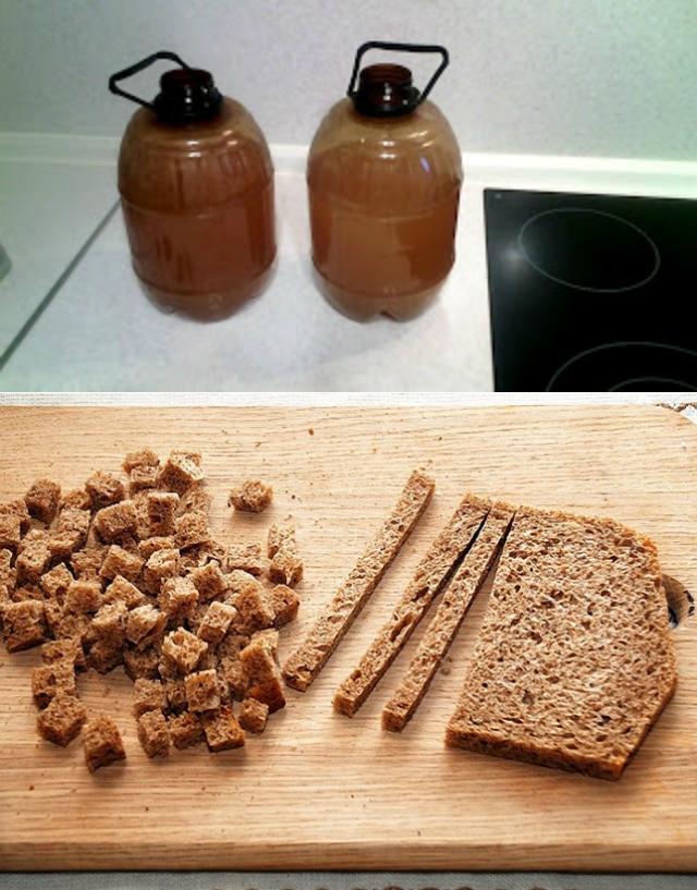 Домашний солод – рецепт изо ржи и ячменя для пива, виски и самогона