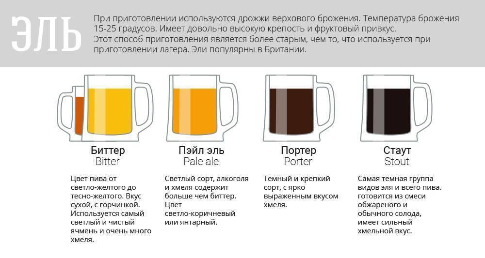 Как наливать пиво из кеги в бутылку. как правильно налить резаное пиво. практическая рекомендация по наливанию пива из кеги