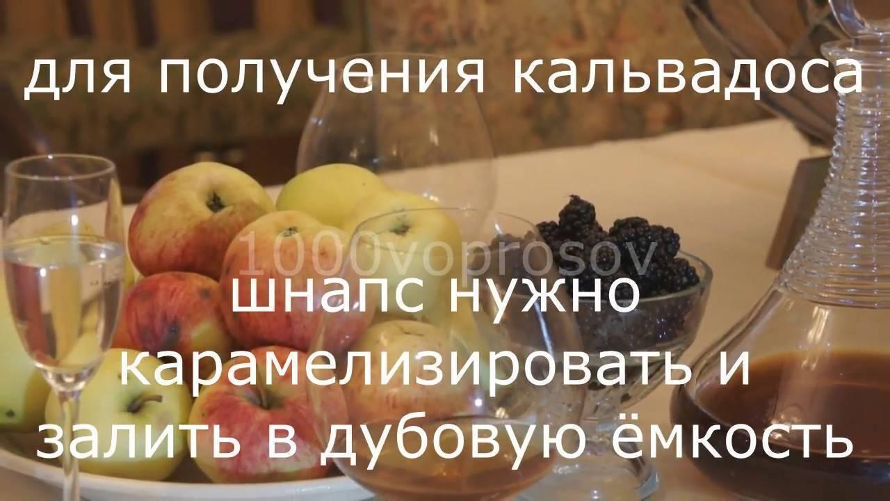 Кальвадос в домашних условиях из яблок рецепт