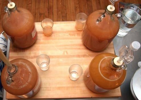 Брага для самогона из яблочного жмыха: простой домашний рецепт