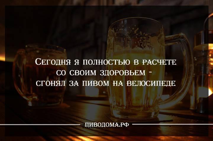 Смешные цитаты про алкоголь | корпоративус