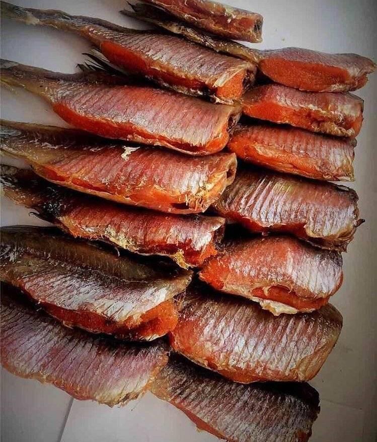 Рыба к пиву: под какой пенный напиток подходит соленые, копченые и вяленые виды рыбных продуктов, как выбрать свежий и качественный продукт