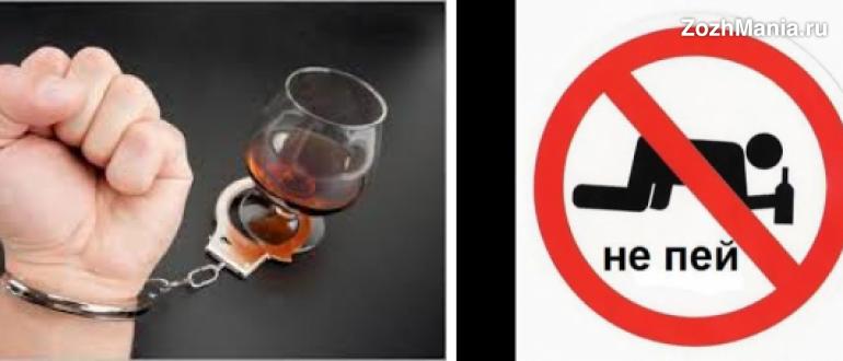 О пользе алкоголя и о его вреде, влиянии на организм человека