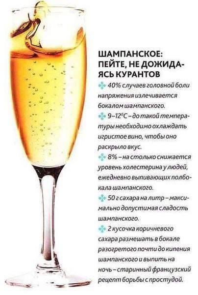Как выбрать алкоголь к новому году – 2020