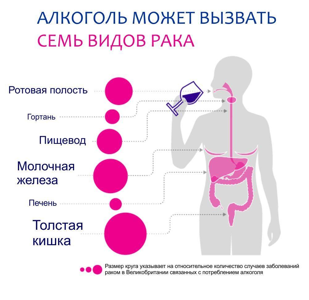 Алкоголь и рак молочной железы: взаимосвязь, негативное воздействие, сочетание с лечением, разрешенные и запрещенные сорта