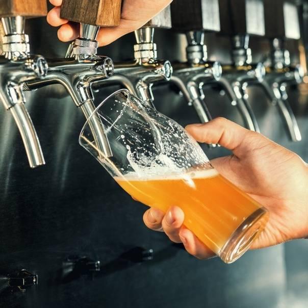 Обзор разливного пива