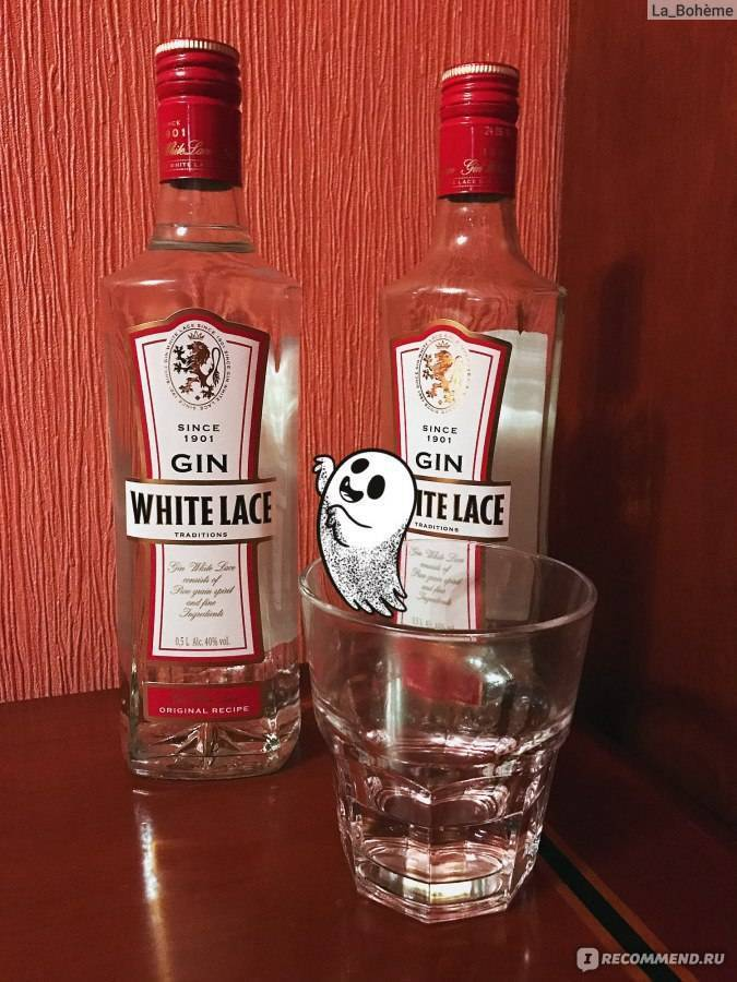 Чем закусывать и как правильно пить алкогольный напиток джин