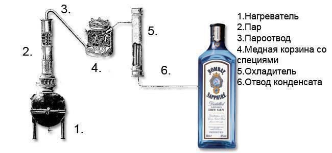 Из чего делают джин + 5 видов