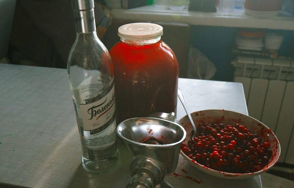 С какими напитками нельзя смешивать алкоголь :: инфониак