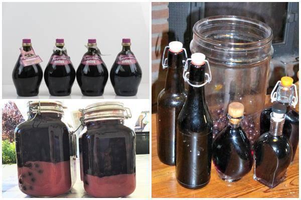Домашнее вино из терна рецепт приготовления - простые пошаговые рецепты с фотографиями