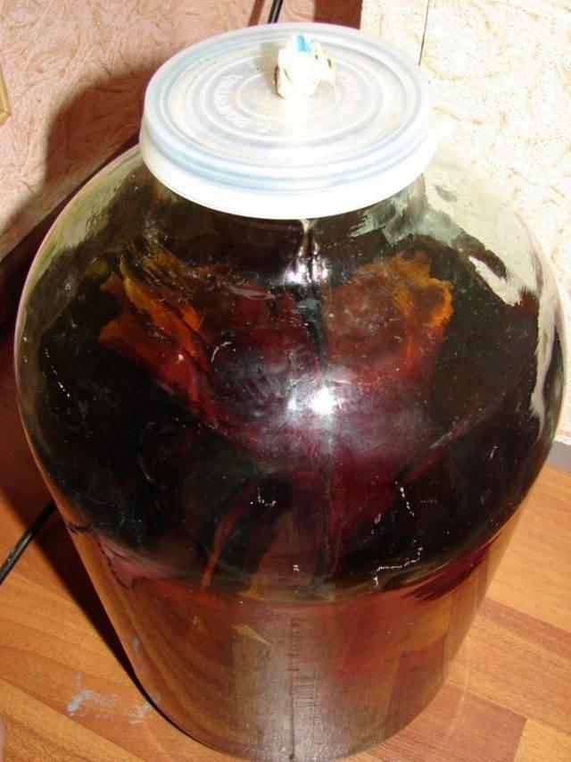 Калгановка на самогоне: польза, вред приготовленных дома напитков