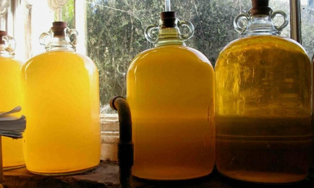 Лучшие рецепты медовухи для приготовления в домашних условиях