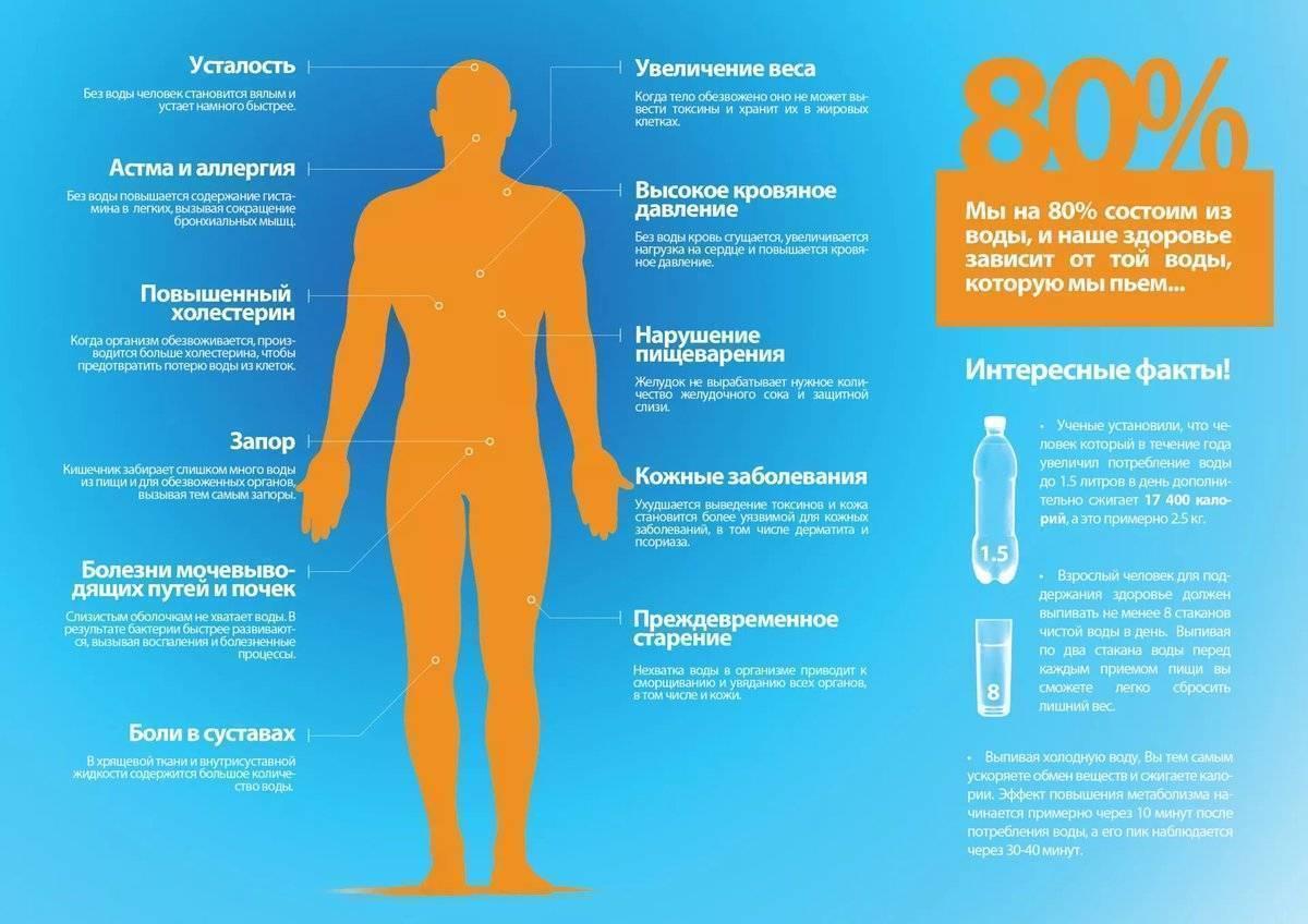 Температура после алкоголя – почему при алкогольной интоксикации возникает аномалия?