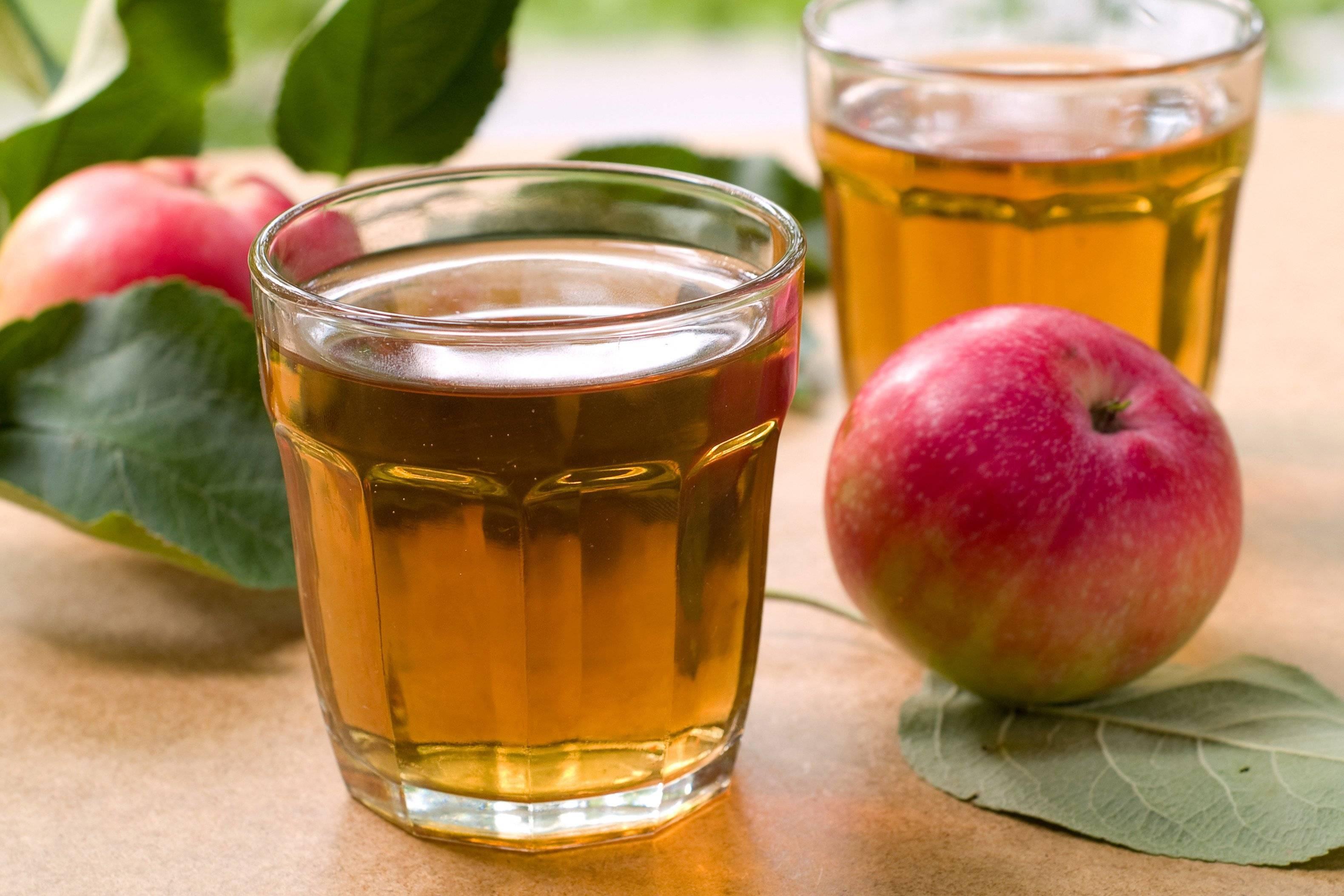 Рецепт молочный коктейль с яблочным соком. калорийность, химический состав и пищевая ценность.