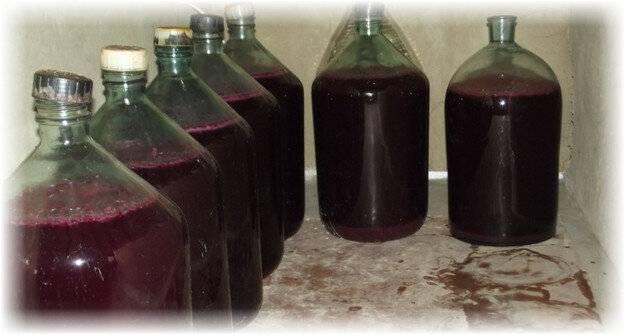 Хранение вина в домашних условиях – правила, которые диктует наука энология