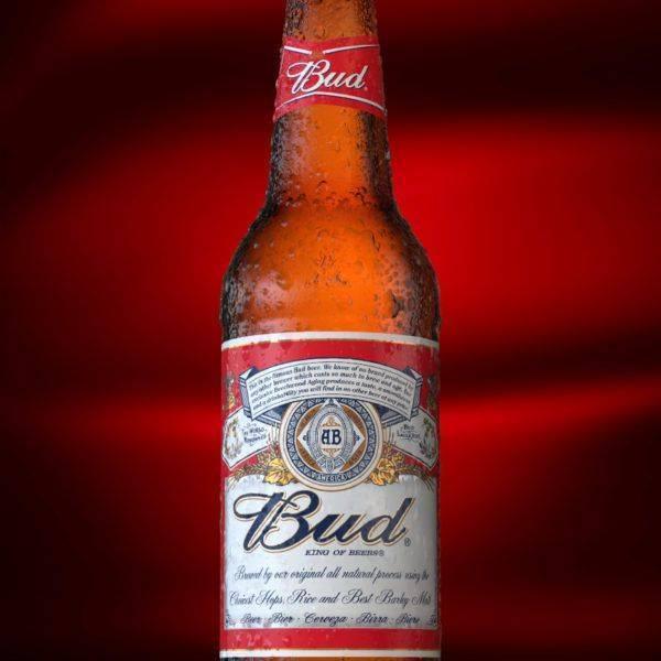 Bud пиво: особенности, история производителя, марки и обзор качества пива (145 фото и видео)