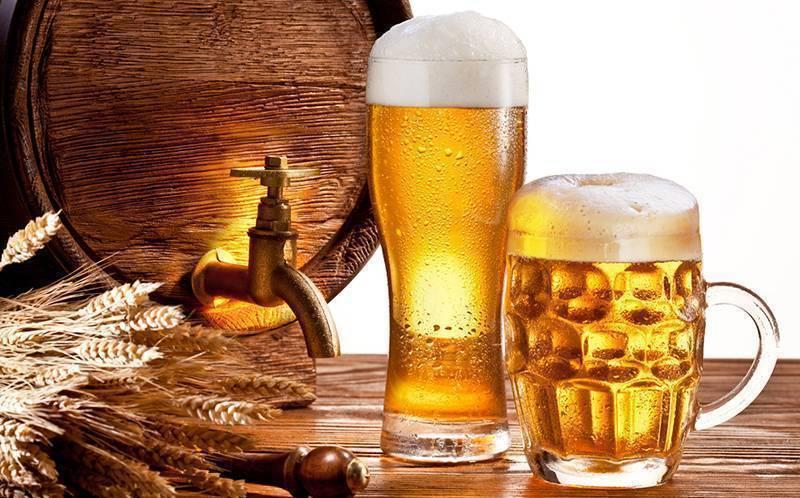 Пиво: польза и вред для здоровья человека