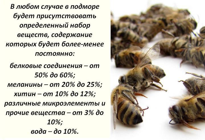Пчелиный подмор: состав продукта, как принимать, лечебные свойства и противопоказания