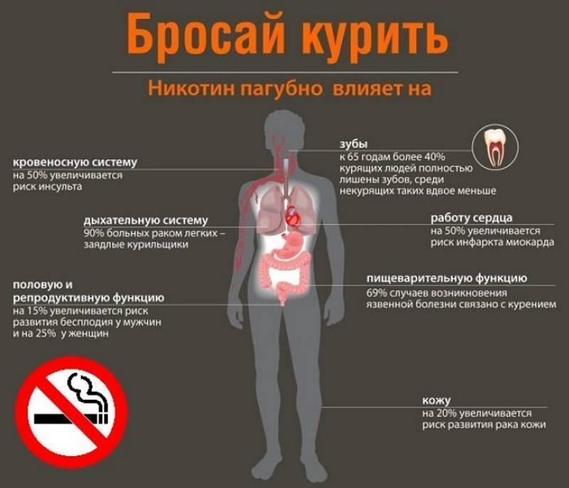 Каково негативное влияние курения и алкоголя на человека.