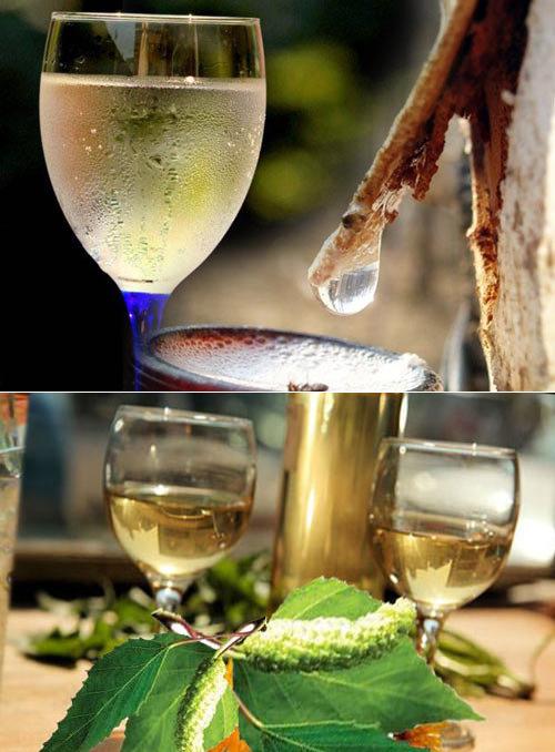 Домашнее вино из березового сока