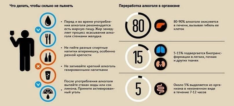 Как быстро протрезветь: 8 способов, которые работают - новости на kp.ua