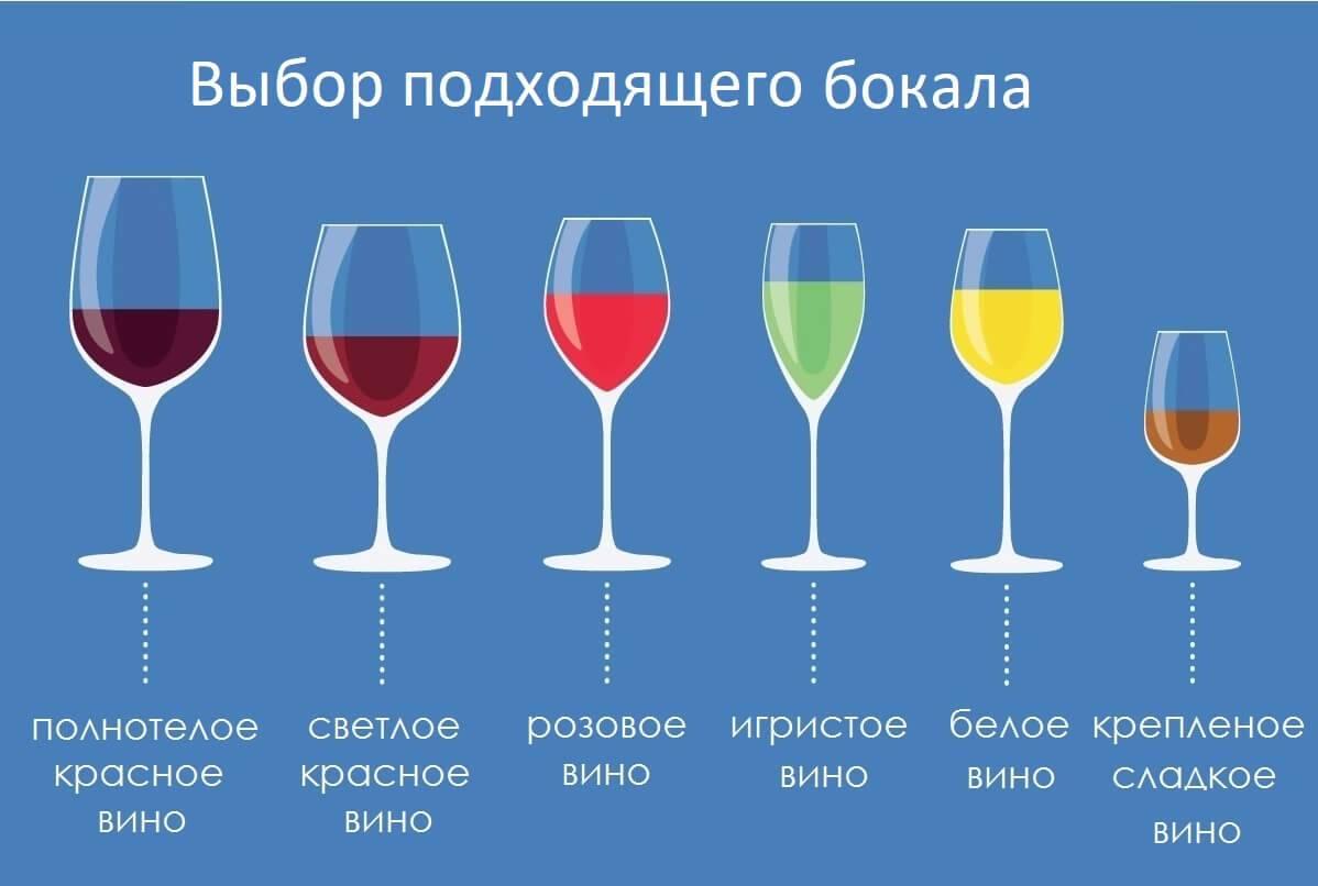 Как называется бокал для коньяка? виды, марки и производители коньячной посуды