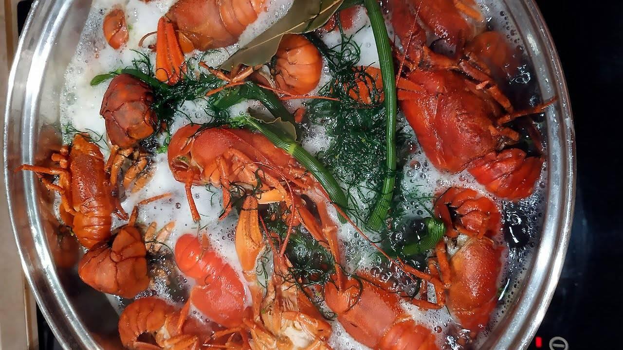 Как варить раков в домашних условиях правильно - вкусные рецепты