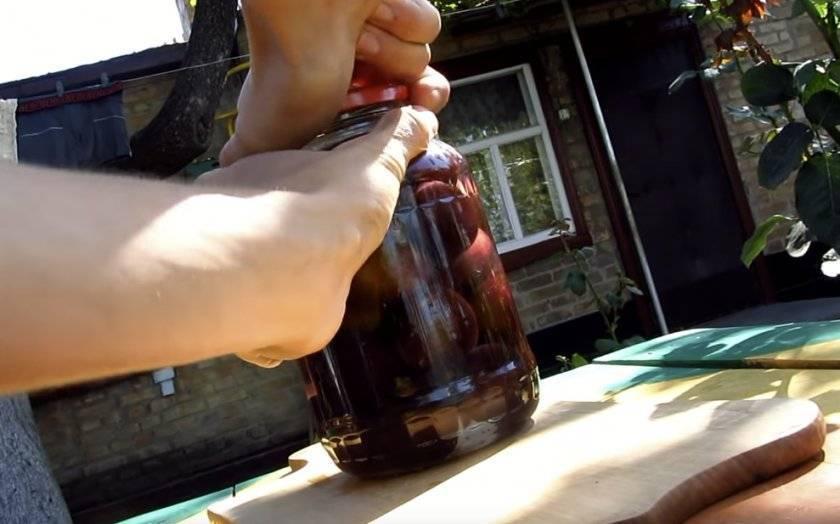 Сербский рецепт сливовицы в домашних условиях