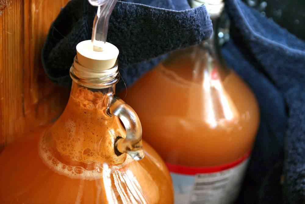 Брага на березовом соке — рецепты, пропорции для самогона