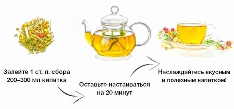 Монастырский чай от алкоголизма: состав и как правильно пить